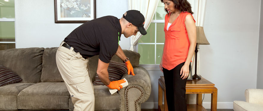Mechanicsville, VA carpet upholstery cleaning