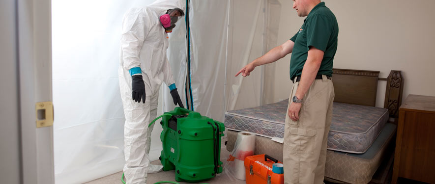 Mechanicsville, VA mold removal process